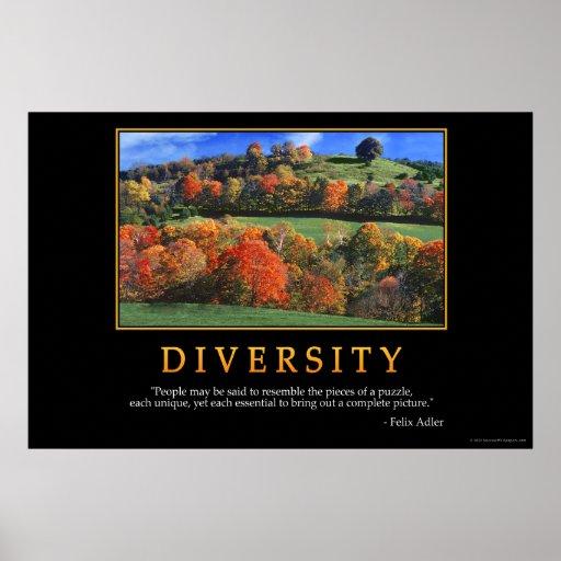 Diversity Posters