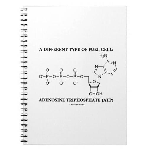 Diverso tipo de trifosfato de adenosina de la pila cuaderno