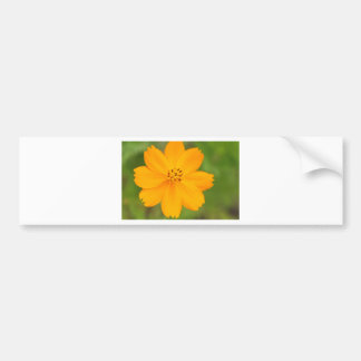 Diversos Flor amarela Car Bumper Sticker