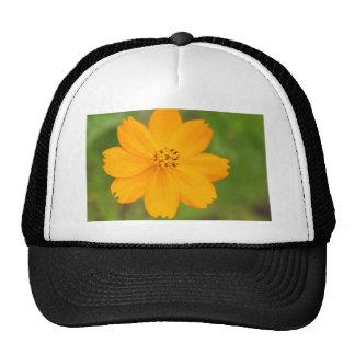 Diversos Flor amarela Trucker Hat