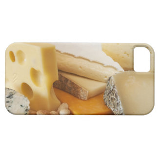 Diversos quesos en la tajadera iPhone 5 fundas
