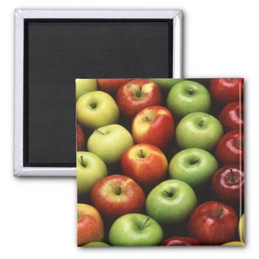 Diversos tipos de manzanas imanes