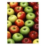 Diversos tipos de manzanas tarjetas postales