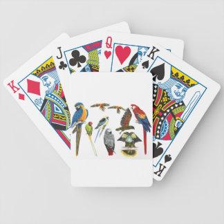 Diversos tipos de regalo del loro para el loro ama baraja cartas de poker