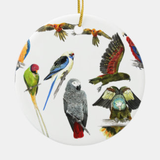 Diversos tipos de regalo del loro para el loro adorno redondo de cerámica