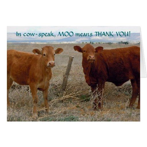 Divertido gracias - el humor animal de la vaca roj felicitacion