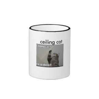 divertido-imagen-gato-charla-a-techo [1], techo… tazas de café