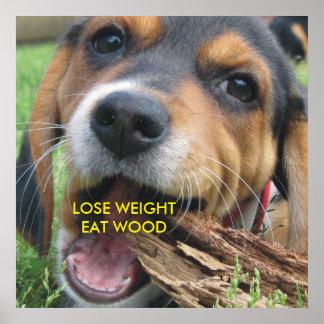 Divertido pierda el peso comen el perrito de póster