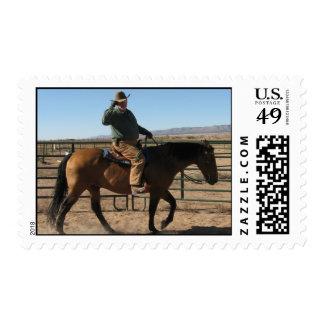 Divertido sobre el vaquero y el caballo - humor franqueo
