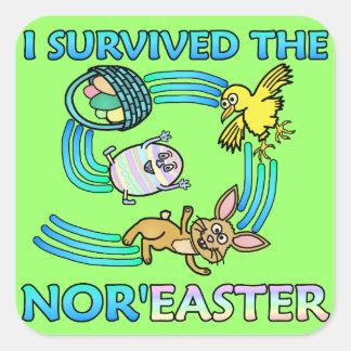 Divertido sobreviví el viento del norte pegatina cuadrada