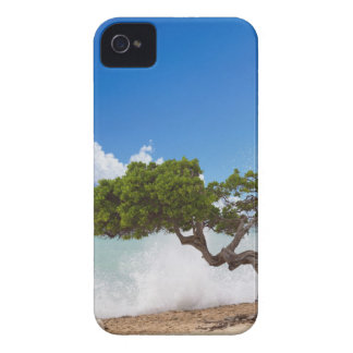 Divi Divi Tree, Eagle Beach, Aruba, Caribbean Case-Mate iPhone 4 Case