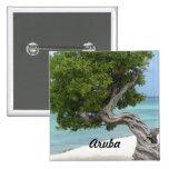Divi Divi Tree in Aruba Button