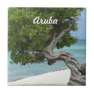 Divi Divi Tree in Aruba Tile