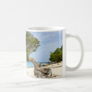 Divi Divi Tree on the Caribbean Island of Aruba Coffee Mug