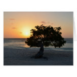 Divi Tree Sunset Card