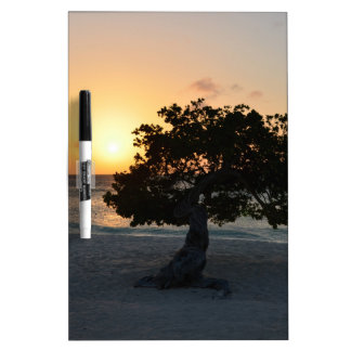 Divi Tree Sunset Dry-Erase Whiteboards