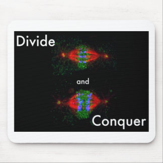 Divide and conquer mouse pad