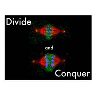 Divide and conquer postcard