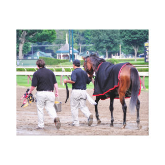 Divine Luck - Phipps Stables Canvas Print
