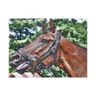 Divine Luck - Phipps Stables Gallery Wrap Canvas