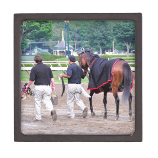 Divine Luck - Phipps Stables Gift Box