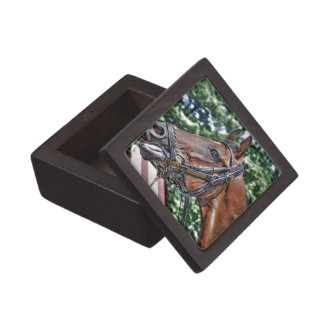 Divine Luck - Phipps Stables Keepsake Box