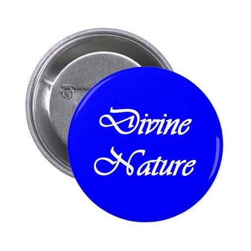 Divine Nature - Personal Progress Value button