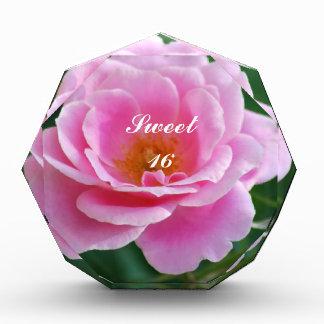 Divine pink rose acrylic award