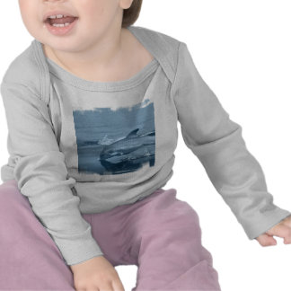Diving Dolphin Infant Shirt