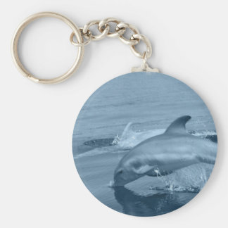 Diving Dolphin Keychains