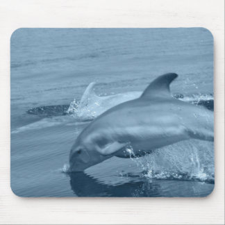 Diving Dolphin Mouse Pad