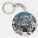 Diving Lobster Key Chains