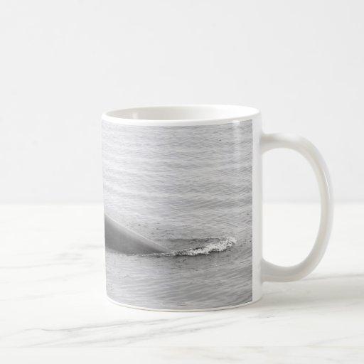 Diving Orca Classic White Coffee Mug