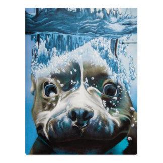 Diving pitbull design postcard