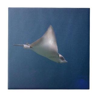 Diving Stingray Tile