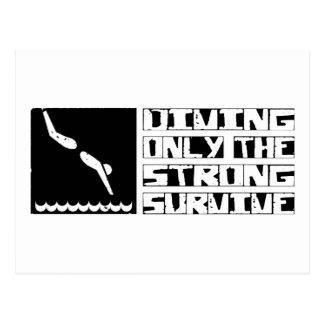Diving Survive Postcard