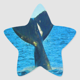 Diving to love ocean humpback whales star sticker