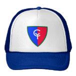 División de infantería del ejército 38.o gorras de camionero