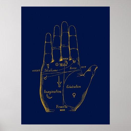 División de la mano póster