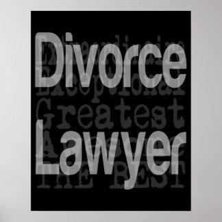 Divorce Lawyer Extraordinaire Poster