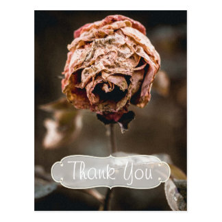 Divorce Party Dead Rose Thank You Postcard