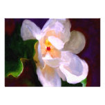 "Dixie mini impresiones de la magnolia carril 5x7"" invitaciones personales"