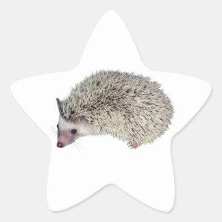 DIY Hedgehog left Star Sticker