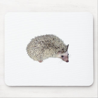DIY Hedgehog right Mouse Pad