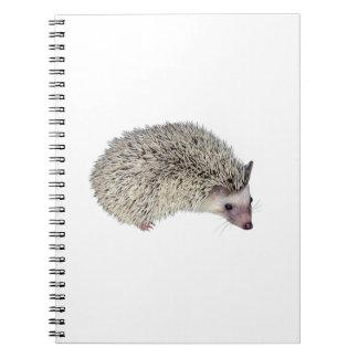 DIY Hedgehog right Note Books