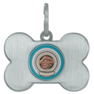 DIY Photo Frame to Personalize Pet Tag