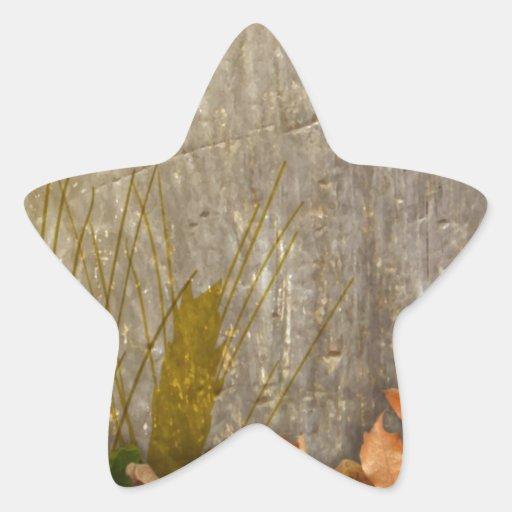 DIY: Plantilla para añadir su imagen del texto n Calcomanias Forma De Estrella