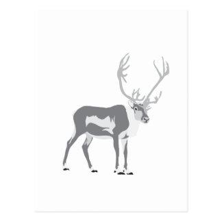DIY Reindeer Postcard