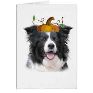 Dizzy Dogz~Border Collie Note Card~Halloween Greeting Card