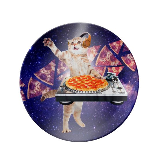 dj cat - cat dj - space cat - cat pizza plate
